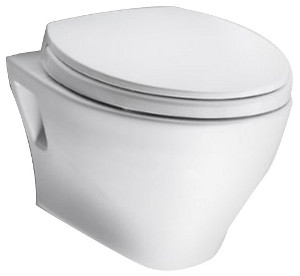 wall surface hung toilet